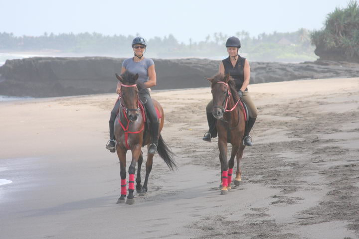 Bali Horse Riding from $20 AUD